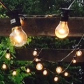 Festoon Party Lights 10m Hire