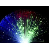 Fibre Optic Light