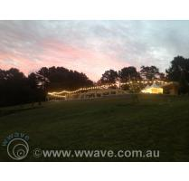 Festoon lighting wedding hire